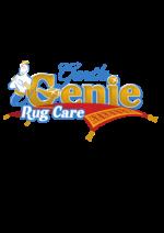 GENTLE GENIE RUG CARE