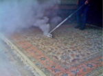 Larson Rug Cleaning